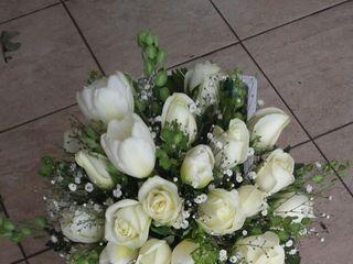 La boda de Cecilia y José Antonio 1
