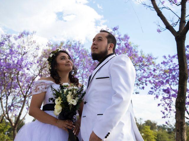 La boda de Mariana y Luis