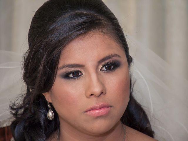La boda de Gabriel y Viridiana en Atlacomulco, Estado México 9