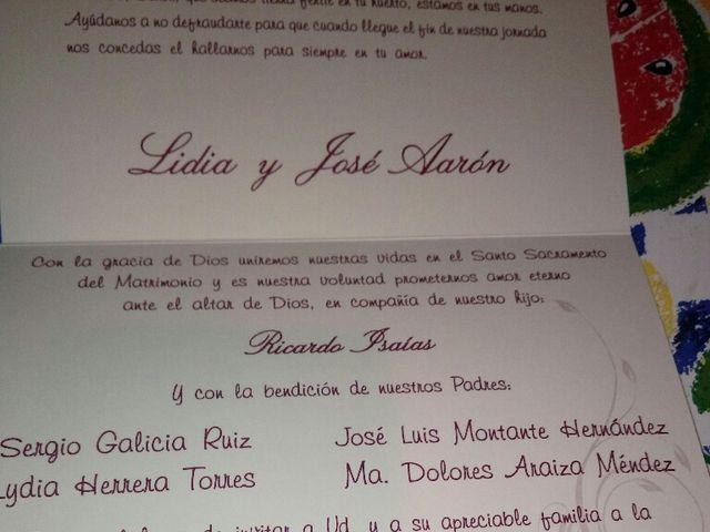 La boda de Jose Aaron y Lidia en San Luis Potosí, San Luis Potosí 2