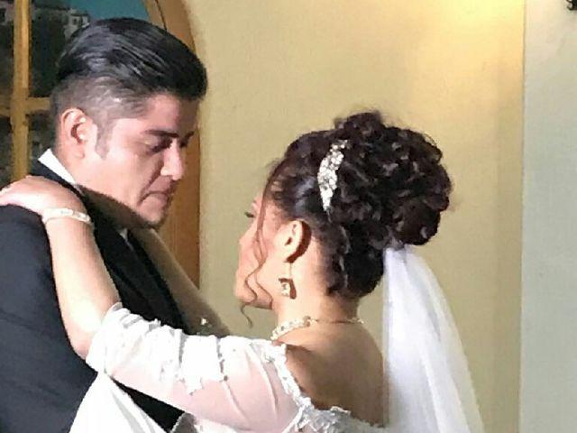 La boda de Jose Aaron y Lidia en San Luis Potosí, San Luis Potosí 5