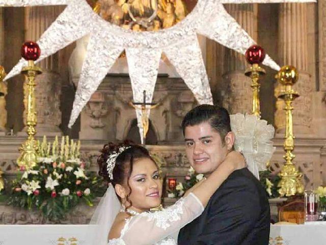 La boda de Jose Aaron y Lidia en San Luis Potosí, San Luis Potosí 6