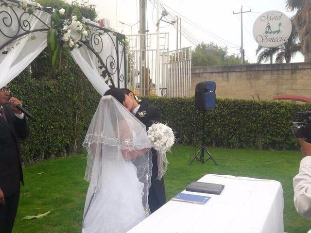 La boda de Luis y Leidy en Puebla, Puebla 15