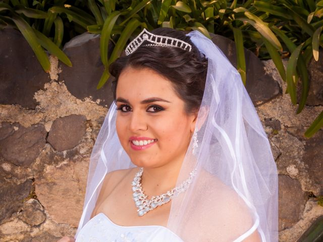 La boda de Luis y Abril en Miguel Hidalgo, Ciudad de México 11