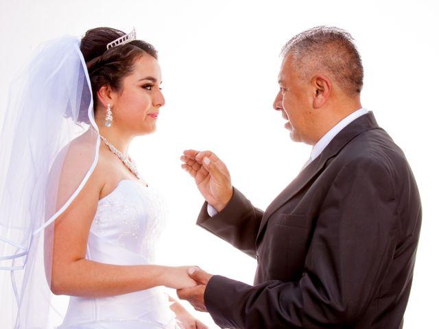 La boda de Luis y Abril en Miguel Hidalgo, Ciudad de México 17
