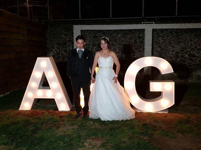 La boda de Gina  y Aviram