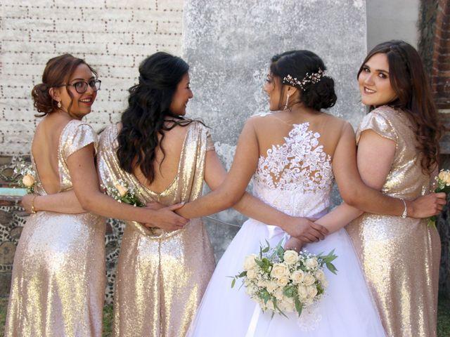 La boda de Julio y Andrea en Apan, Hidalgo 18