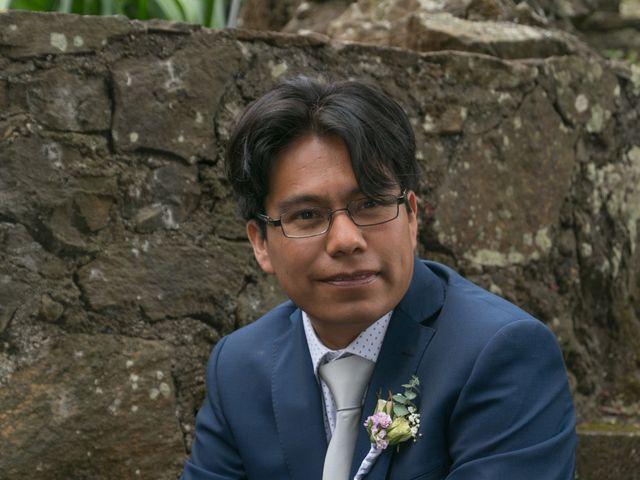La boda de Carlos y Mayela en Uruapan, Michoacán 18