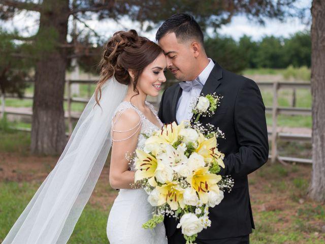La boda de Paulina y Luis