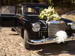 La boda de Ayla y Lluís 3