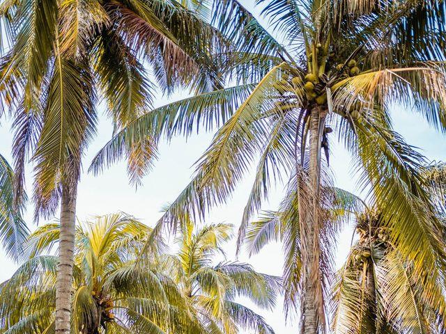 La boda de Fernando y Carmen en Playa del Carmen, Quintana Roo 9