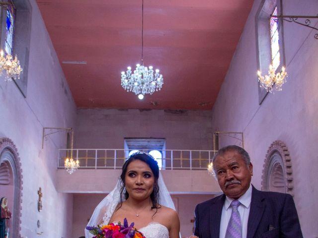La boda de Carlos y Marissa en La Manzanilla de La Paz, Jalisco 20