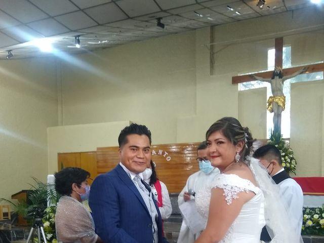 La boda de Enrique y Cristina en Naucalpan, Estado México 5