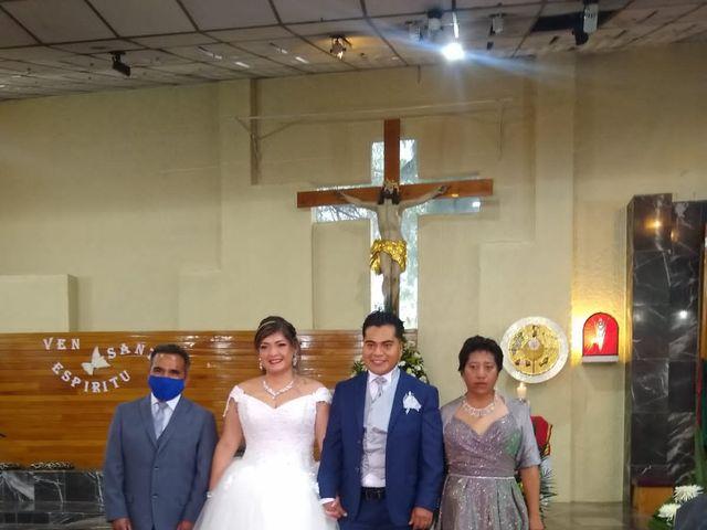 La boda de Enrique y Cristina en Naucalpan, Estado México 9
