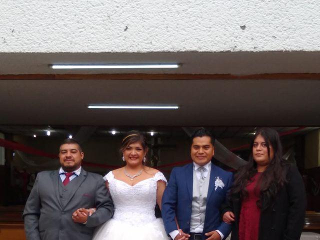 La boda de Enrique y Cristina en Naucalpan, Estado México 11