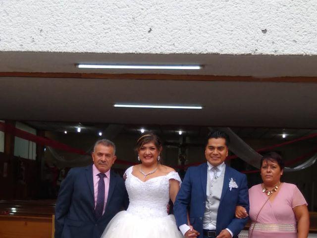 La boda de Enrique y Cristina en Naucalpan, Estado México 13