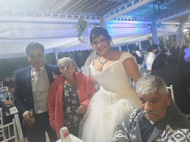 La boda de Enrique y Cristina en Naucalpan, Estado México 15
