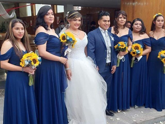 La boda de Enrique y Cristina en Naucalpan, Estado México 17