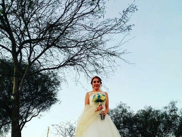 La boda de Daniel y Cleme en San Luis Potosí, San Luis Potosí 3
