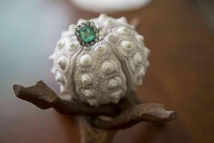 anillo de compromiso con diamante sobre planta exótica