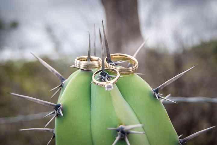 anillo de compromiso y de boda en cactus