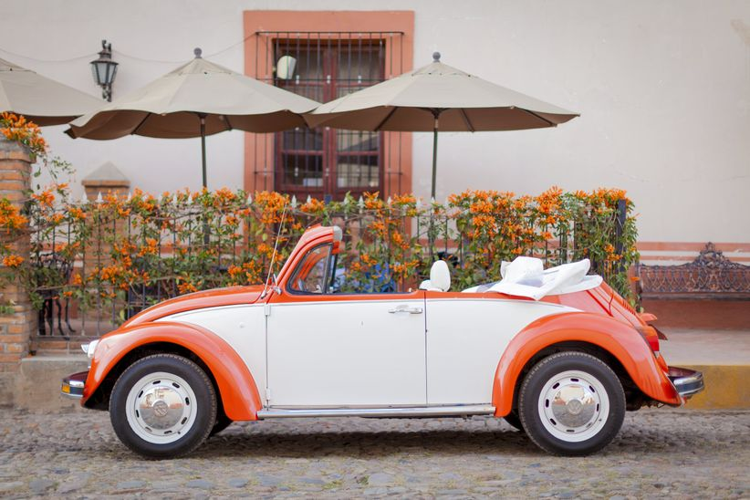 The Traveling Beetle