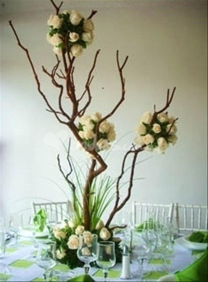 Decoraci n con ramas for Arboles altos para jardin