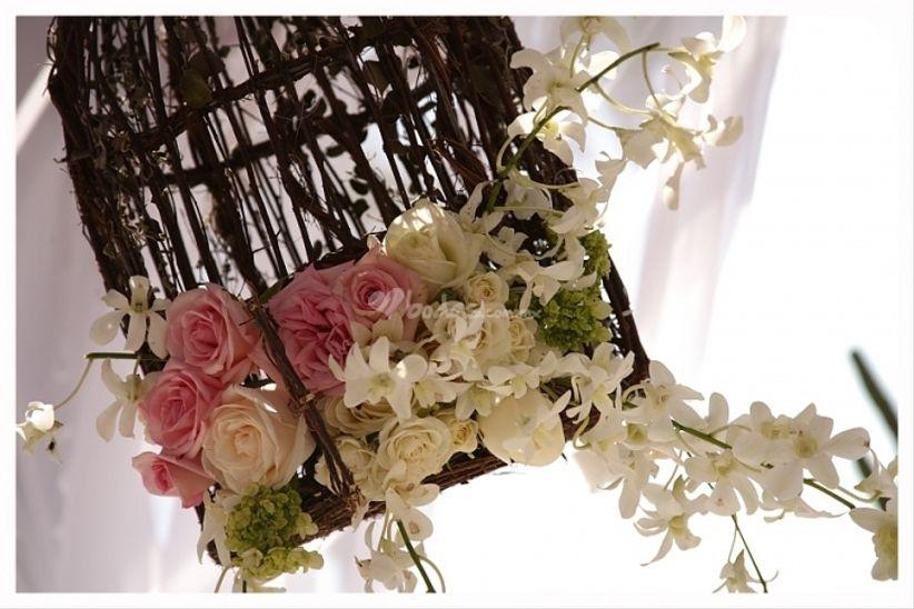 Jaulas Para Decoracion De Bodas ~ Si para la decoraci?n de su boda est?n buscando elementos originales