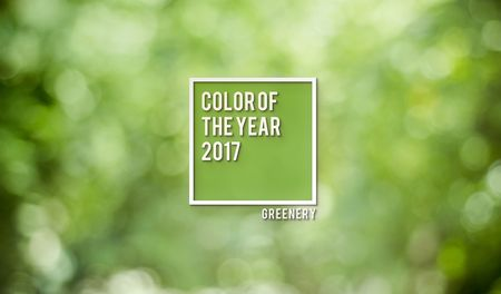 Color tendencia para el 2017: Greenery