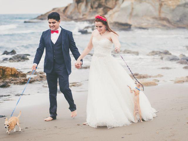 7 razones (y 7 advertencias) para que su mascota participe en la boda