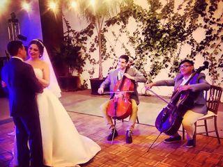 Rojan Dos Cellos 4