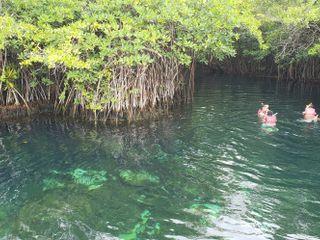 Bel Air Collection Resort & Spa Xpuha Riviera Maya 2