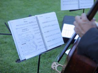 Amadeus Musicale 3