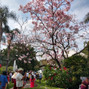 La boda de Lizbeth Marín y Punta Luna 10