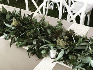Macadamia Flores 3