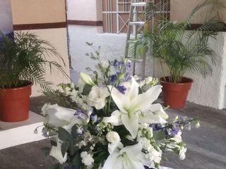Florale Diseño Floral 2
