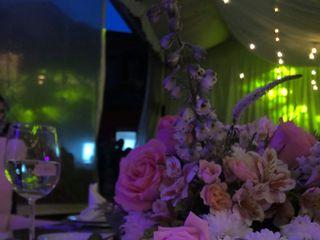 Juan Luis Zavala Wedding & Event Planner 1