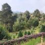 La boda de Sarai y El Bosque del Ciclo Verde 5