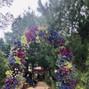 La boda de Sarai y El Bosque del Ciclo Verde 8