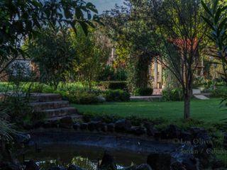 Jardín de Los Olivos 3