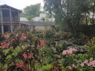 Jardín de Los Olivos 5