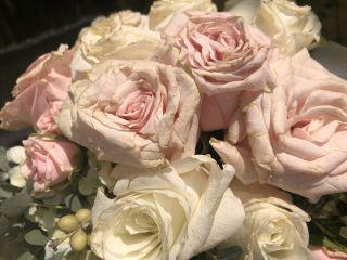 Flores Más Flores 1