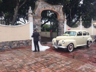 Auto Classic Dreams 5