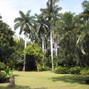 La boda de Nayeli Medina y Hacienda Santa Cruz Vista Alegre Casco Antiguo y Trapiche 11