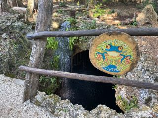 Cenote Elvira 5