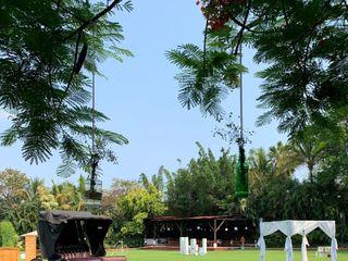 Thesan Jardín 3