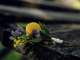 Encanto Floral 2