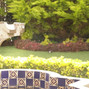 Jardín Zacapa 7