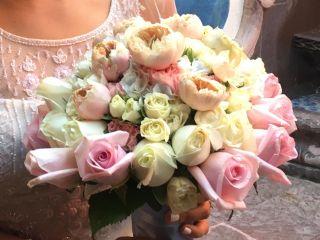 La Casa de Las Flores 1