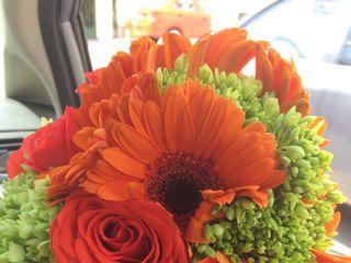 Flores Ilussion 1
